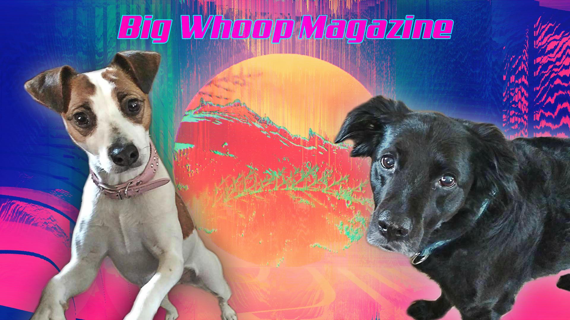 Big Whoop Magazine